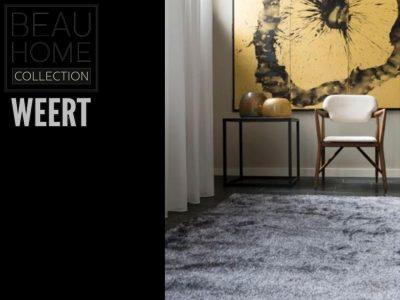Karpet Dordrecht